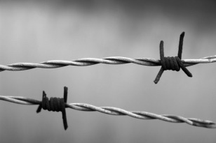 barbed-wire-1269430_1920