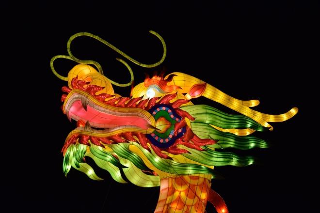 dragon-1306914_1920-2