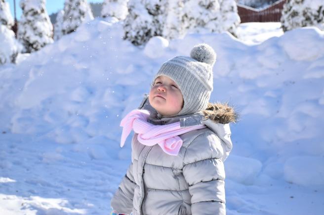 snow-1217124_1920