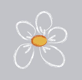 daisy-158842__340