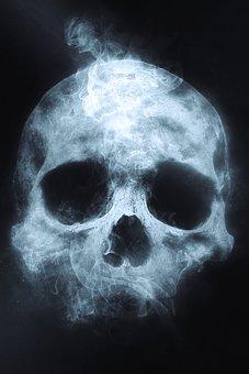 skull-1612504__340