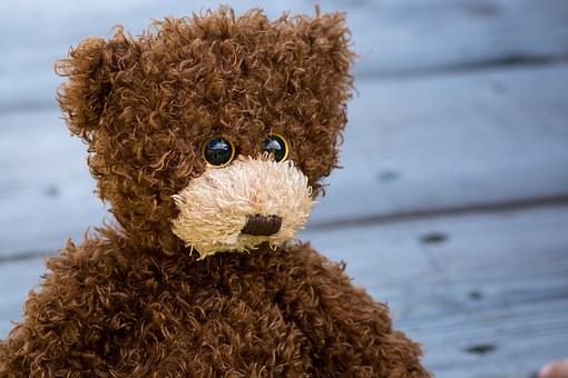 teddy-1485298__340