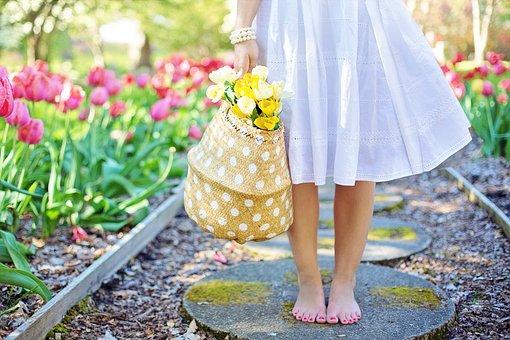 spring-2298279__340-2