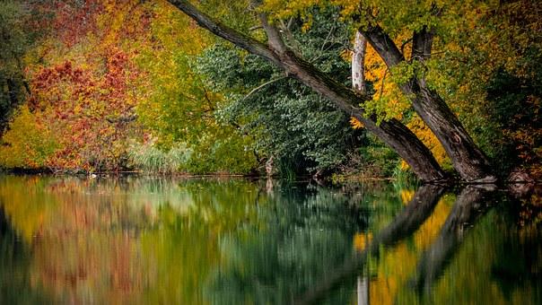 autumn-994897__340