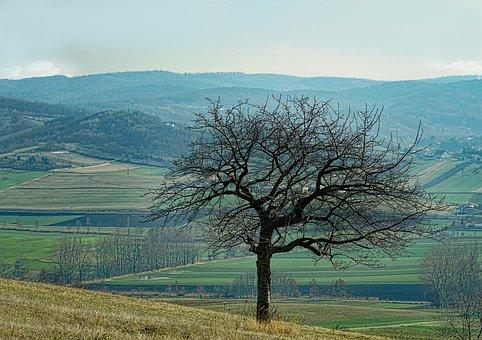 landscape-3257640__340