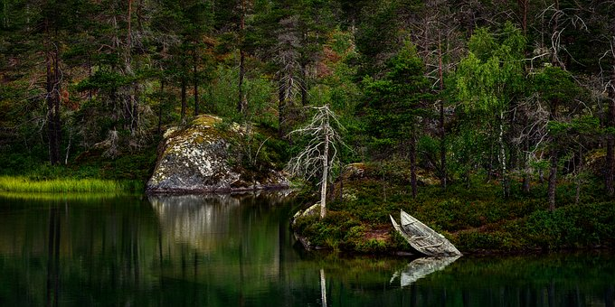 nature-3262780__340
