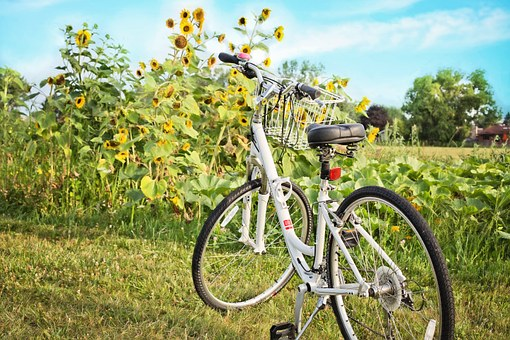 bicycle-871265__340